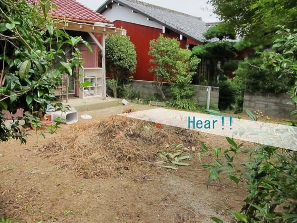 庭の空きスペース