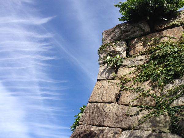 豊田市の桜城址公園の石垣と青空