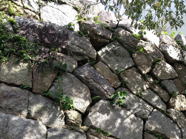 城跡の石垣と木漏れ日