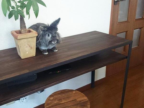 オーダー頂きました鉄脚テーブルを納品させて頂きました。