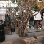 豊橋 garage シンボルツリー用の材料